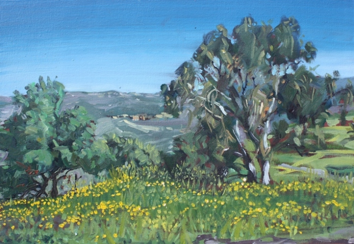 Castle-Nimrod-Golan-Heights